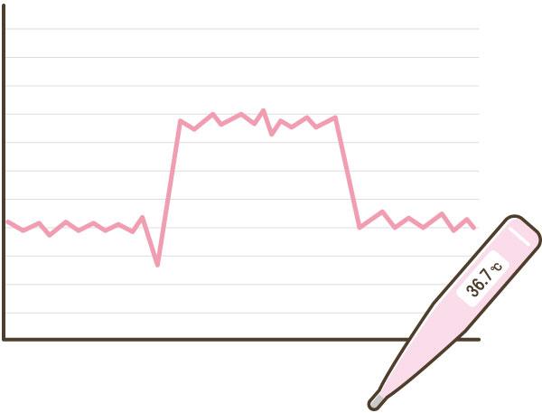基礎体温表の記録方法